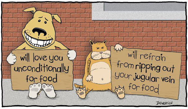 Hilarious Dog vs Cat Cartoon Image