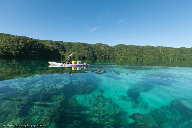 Những bức ảnh đẹp của Đảo Quốc Palau
