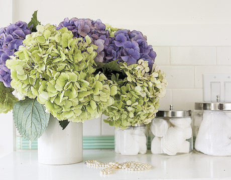 Creative juices decor landscape ideas hydrangeas and peonies for Bathroom arrangement designs