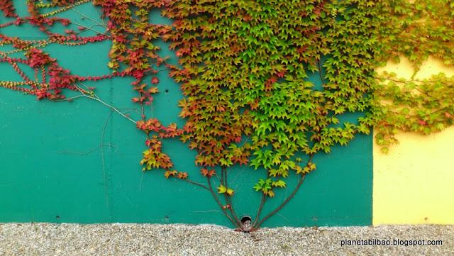 Paisaje urbano,hiedra,otoño,exposición,Planeta Bilbao