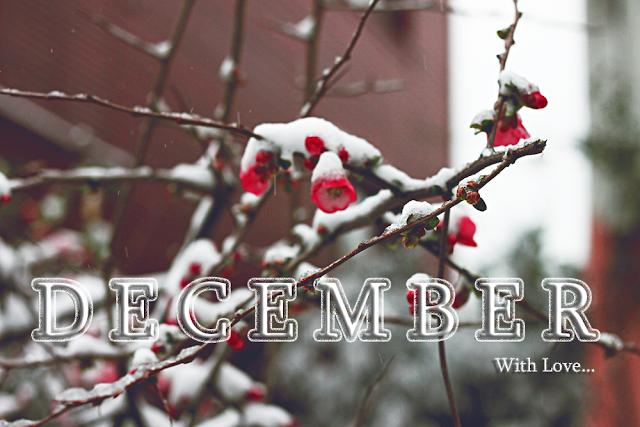 Aralık takvimi