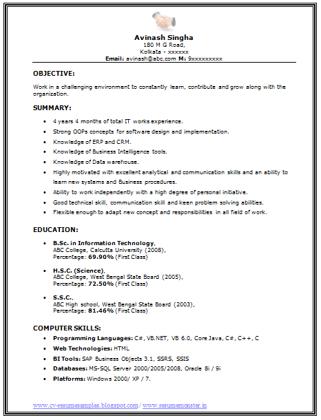 ... 10000 CV and Resume Samples with Free Download: BSC IT Resume Sample