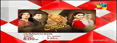 humnasheen last episode 22 is a pakistani drama writer of drama