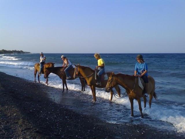 Santorini Discount Club: Horse Riding in Santorini