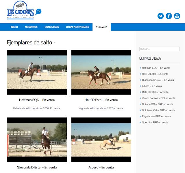 http://webtv.hipicalascadenas.com/category/ejemplares-de-salto/