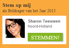 BRILDRAGER VAN HET JAAR <br> PLEASE VOTE FOR ME!!!