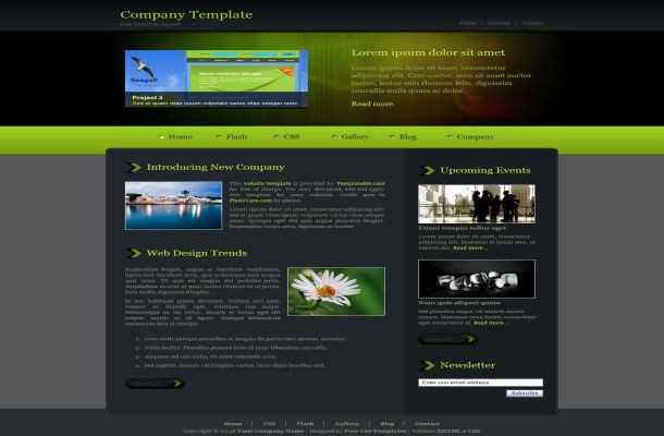 Free CSS Abstract Green Black Website Template