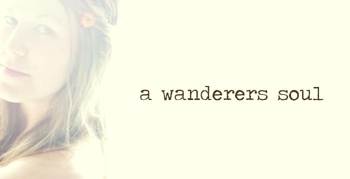 A Wanderers Soul