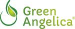 penumbuh rambut alami vitamin shampo mengatasi rontok  green angelica