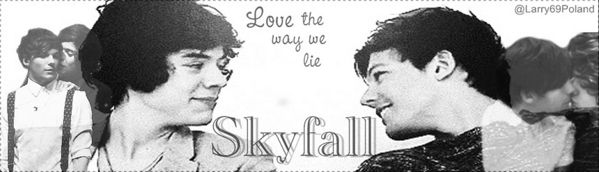 Skyfall - The Larry Stylinson Real Story.