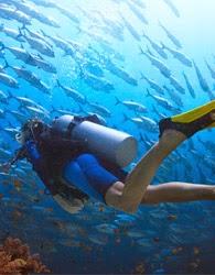 Scuba Diving @ ECR Ocean Spray