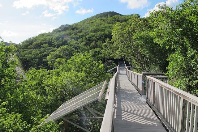 Concordia recycled walkways