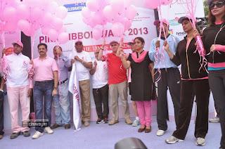 Pink-Ribbon-Walk-2013-Stills