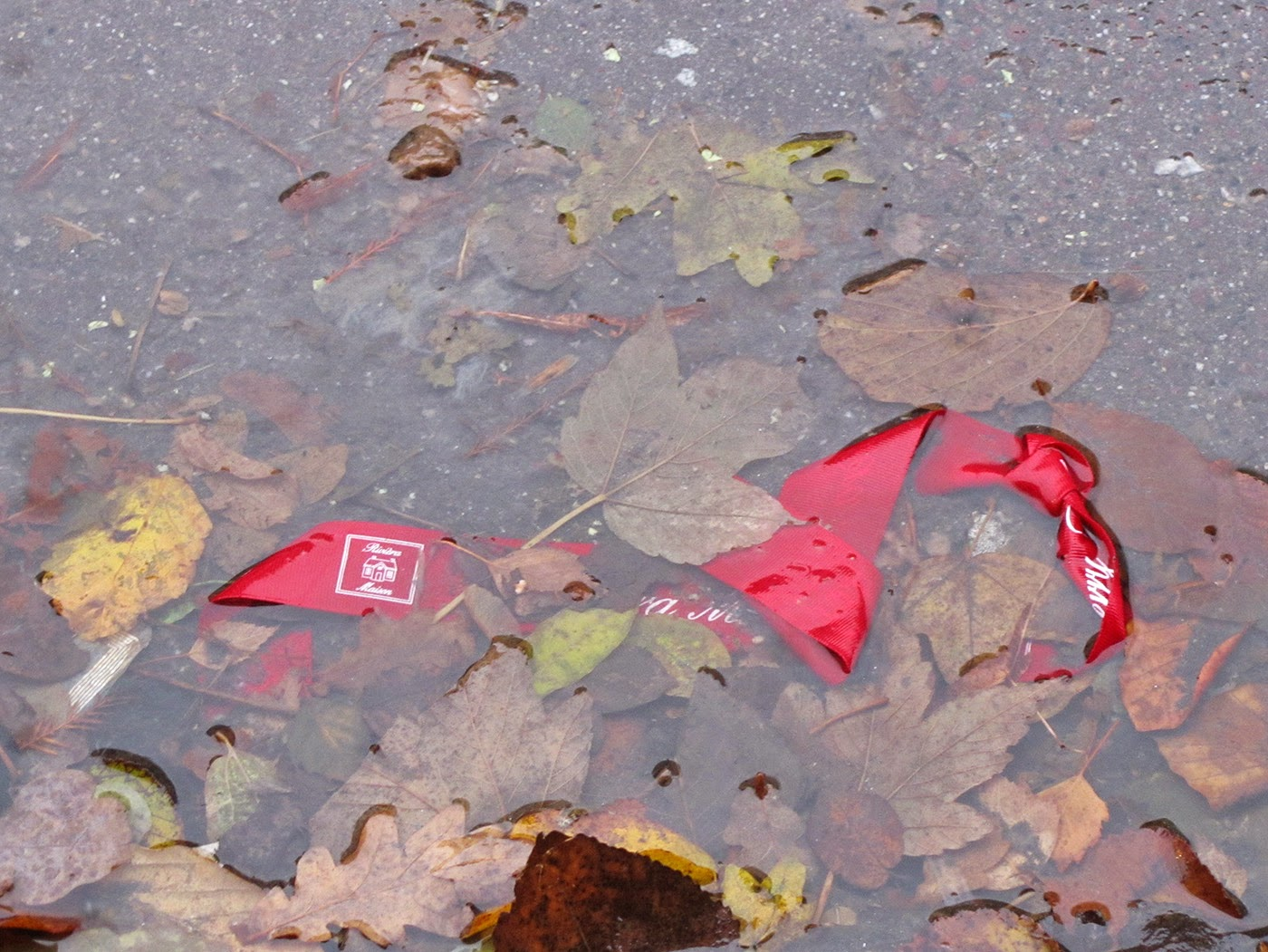 red ribbon in the gutter