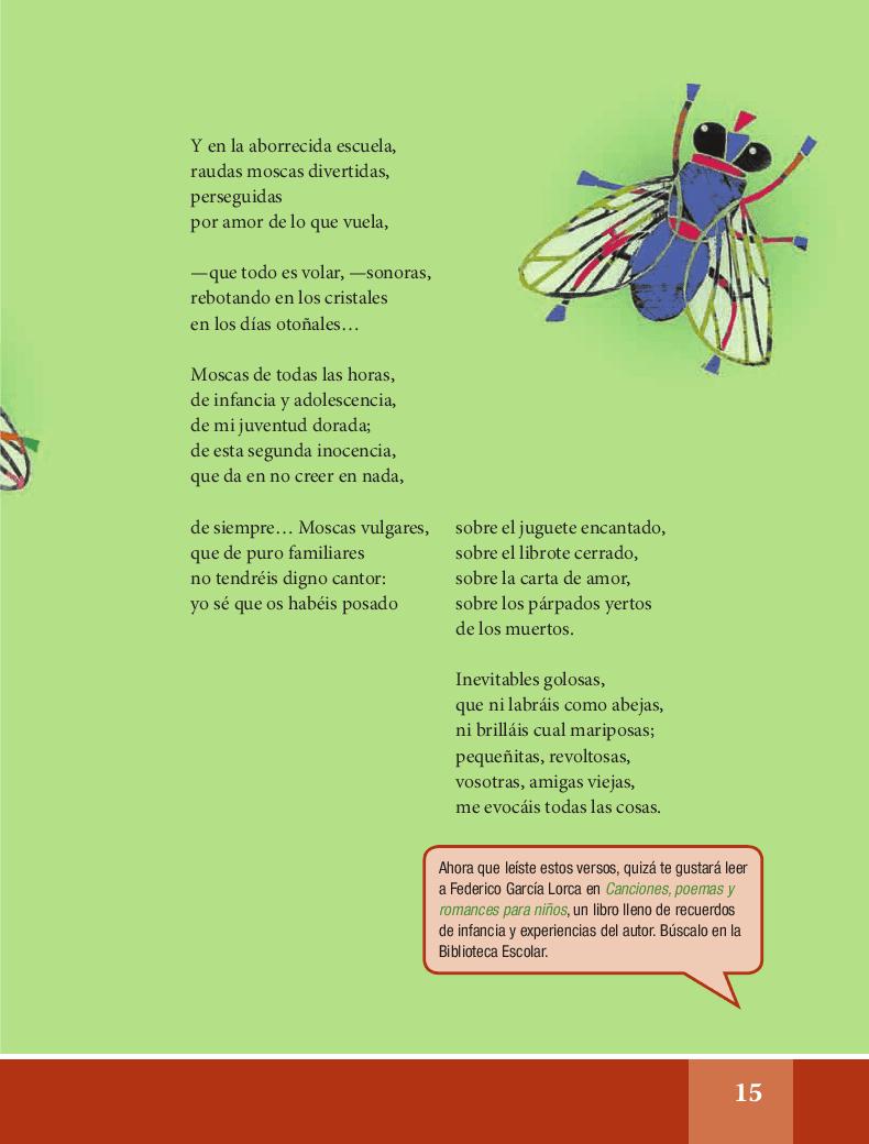 Las moscas - Español Lecturas 6to 2014-2015