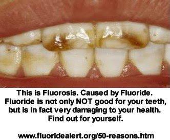 www.fluoridealert.org