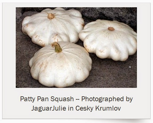 peter pan squash art by jaguarjulie