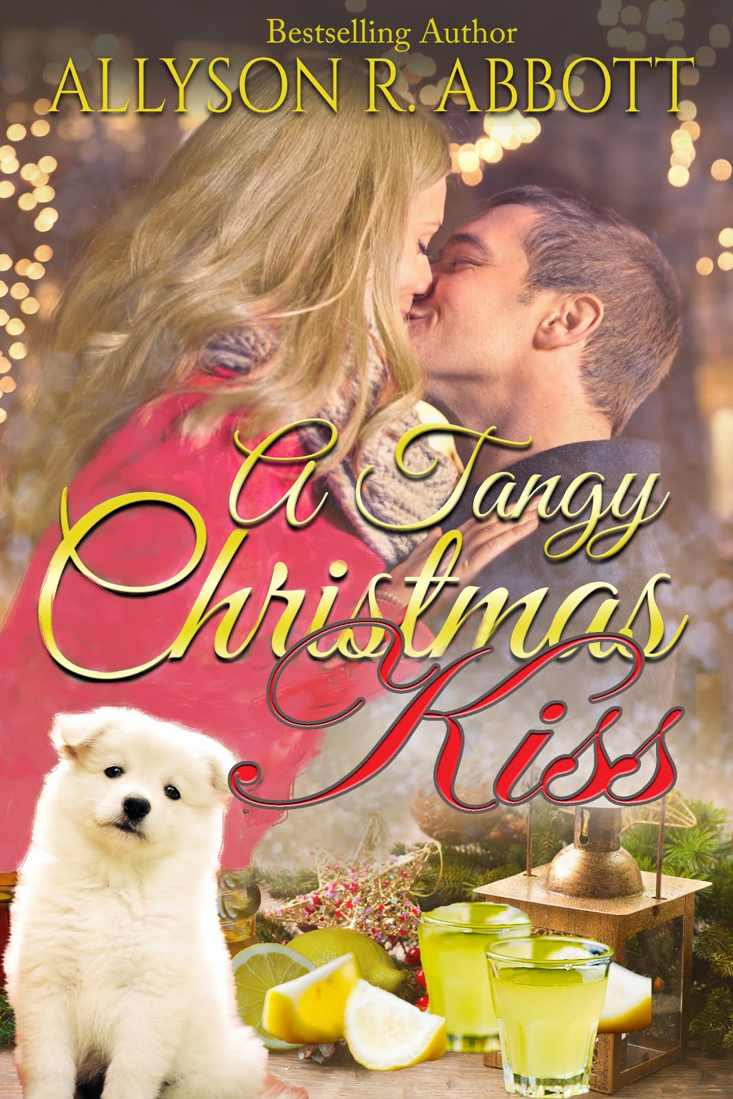 Book 2: A Tangy Christmas Kiss