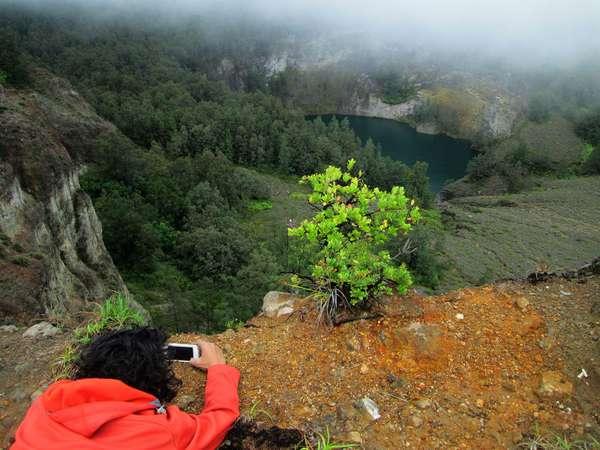 Flora di Gunung Kelimutu