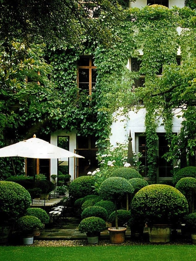 Redirecting for Garden design ideas with hedges