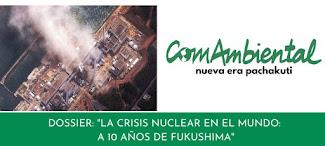 Nueva convocatoria: a 10 años de Fukushima-I