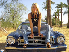 Sexy Girls And Classic Cars (3)