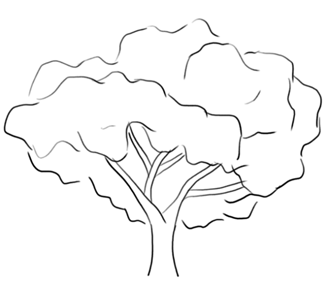 Coloring Trees Child Coloring