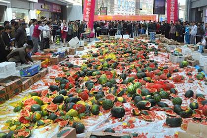 4 Ton Semangka Dimusnahkan Akibat Terkontaminasi Pestisida
