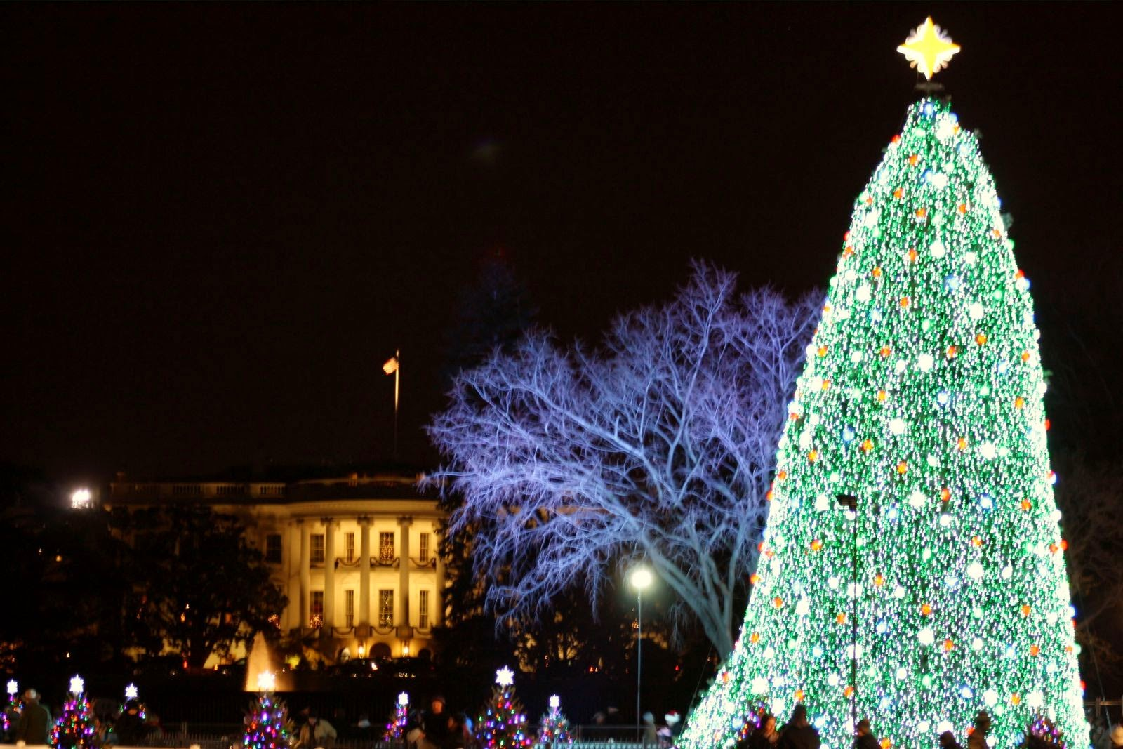 Superior Christmas Tree Washington Part 5 If Youu0027re Going  - Visiting The National Christmas Tree