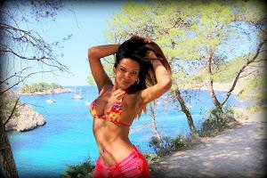 summer ibiza 2013