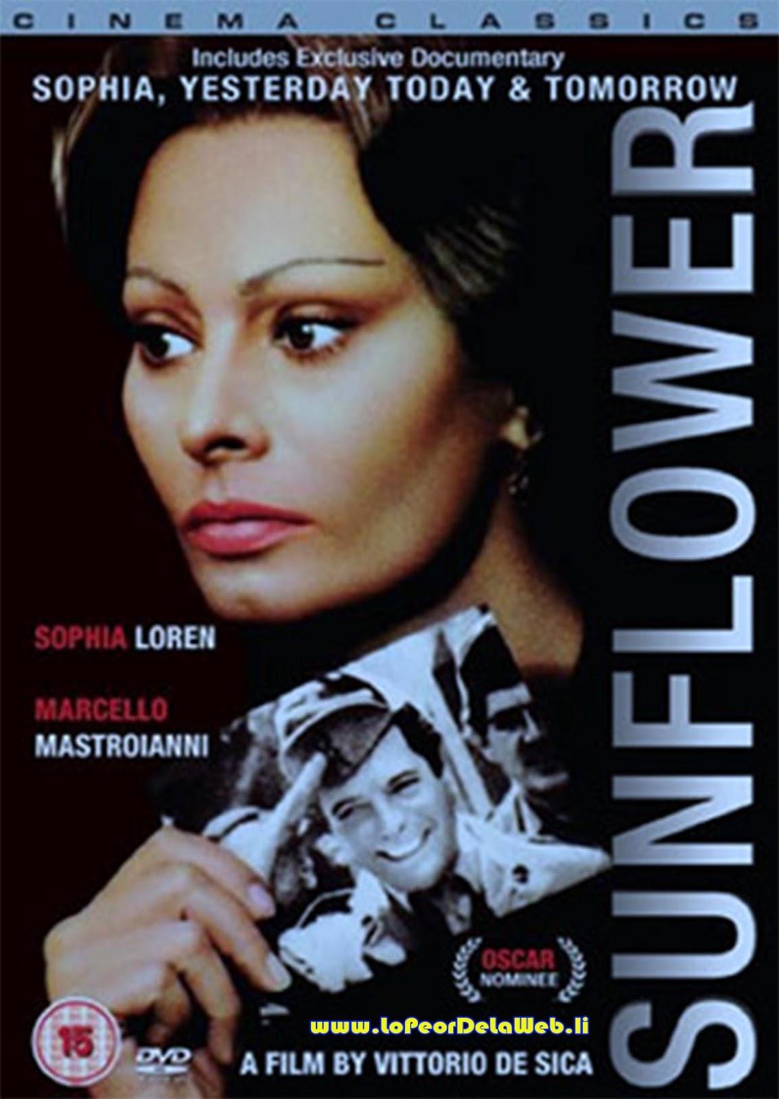 Los Girasoles de Rusia (1970 / Sophia Loren/M. Mastroianni)