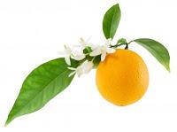 una naranja con sus hojas y flores