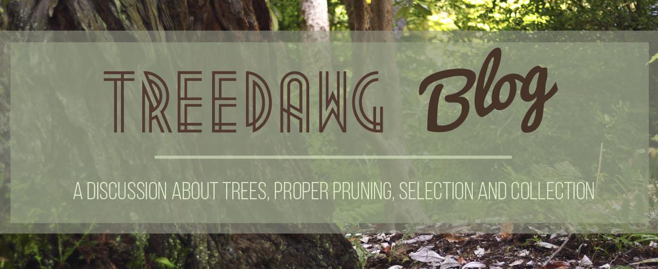 TreeDawg Blog