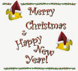 New Year 2016 And Christmas 2015 Pictures Wallpapers Images Greetings