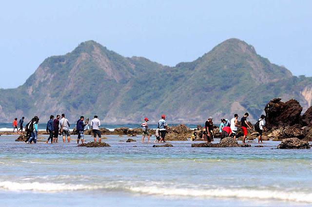 Alasan Lomba Surfing Dunia Digelar Di Pantai Pulau Merah