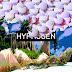 (NEW MUSIC)Brandon Bates- Hypnogen