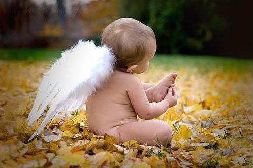 anjos-uma-dadiva.jpg