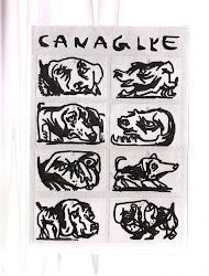 CANAGLYE