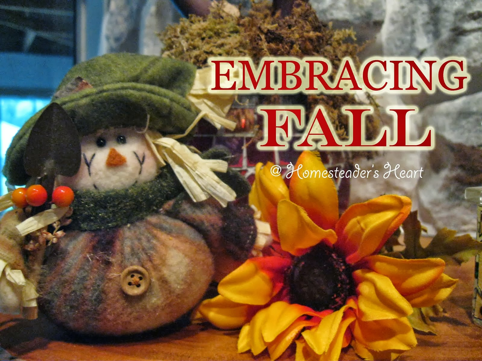 Embracing Fall 2013