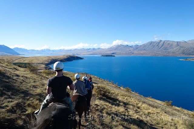 Lake Tekapo, Mackenzie Alpine Horse, 特卡波湖, 騎馬
