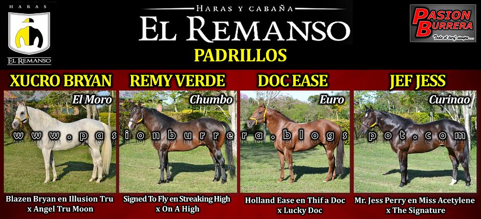 EL REMANSO - PADRILLOS