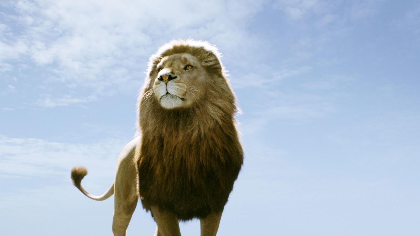 """Native Wood-Notes Wild: My Favorite Quotes from """"The Chronicles of ... for Narnia Aslan Quotes  588gtk"""