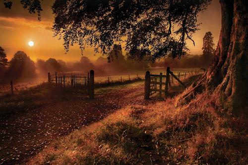 Amanecer en Otoño by Gary Mc Parland | clic para ampliar