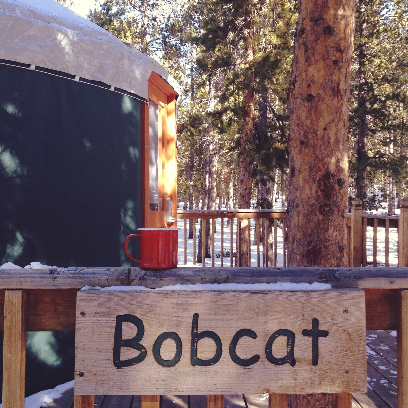 Popular A yurt is a funny thing It is a circular room tent shelter This one had a gas fireplace sets of bunk beds a table and chairs