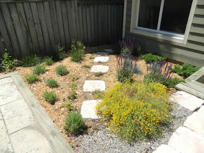 Xeriscape Leslieville garden install after by Paul Jung Gardening Services Toronto