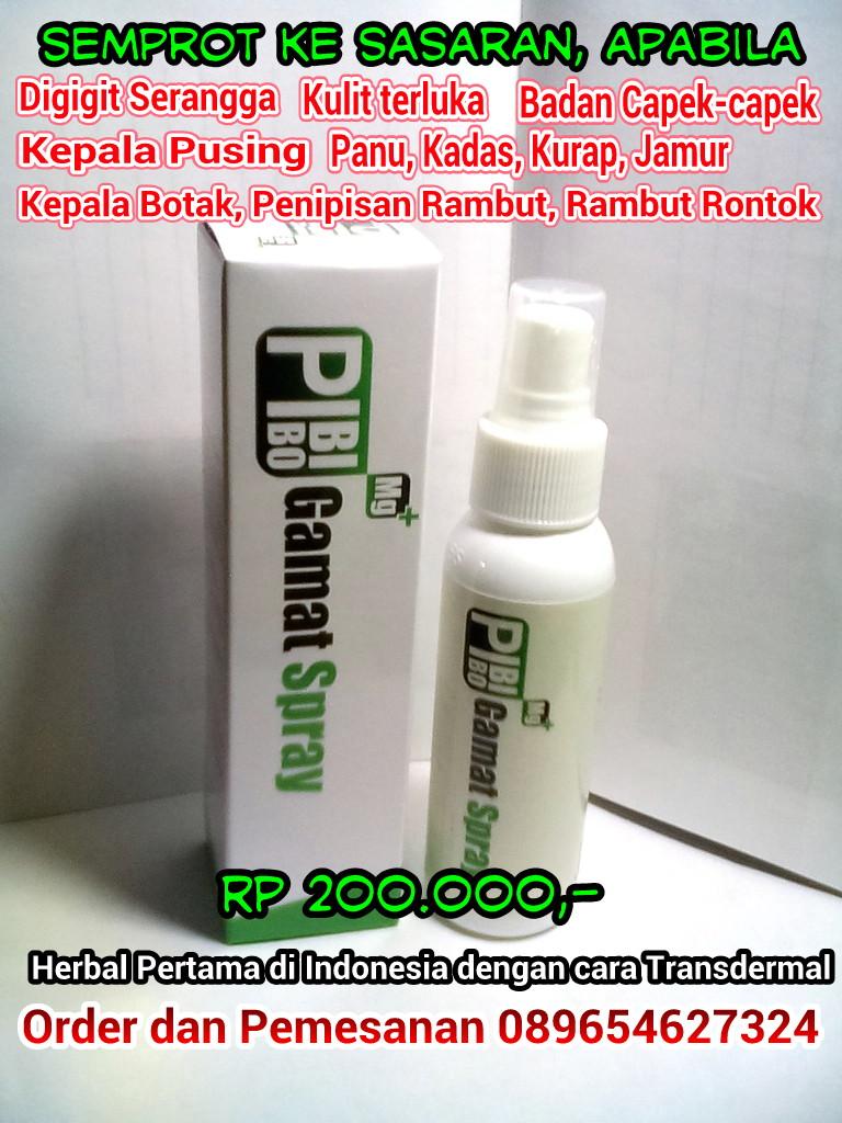 Gamat Spray Mg+