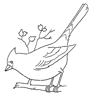 Line Art Coloring Page Cardinal Bird on Branch Embroidery