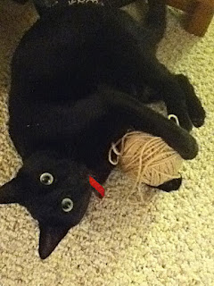 My black cat Starfire pummeling a ball of yarn