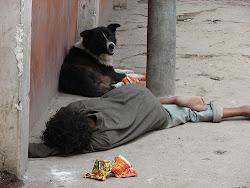 Many homeless are children