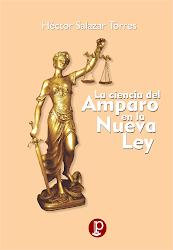 La ciencia del Amparo en la Nueva Ley
